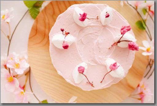 レアチーズケーキ 真上横_mini